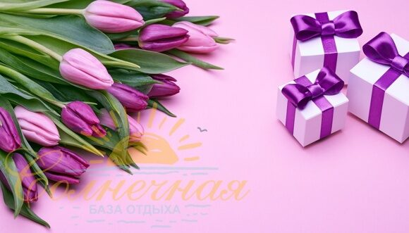 Tulips_Gifts_Box_Violet_533188_4992x2856